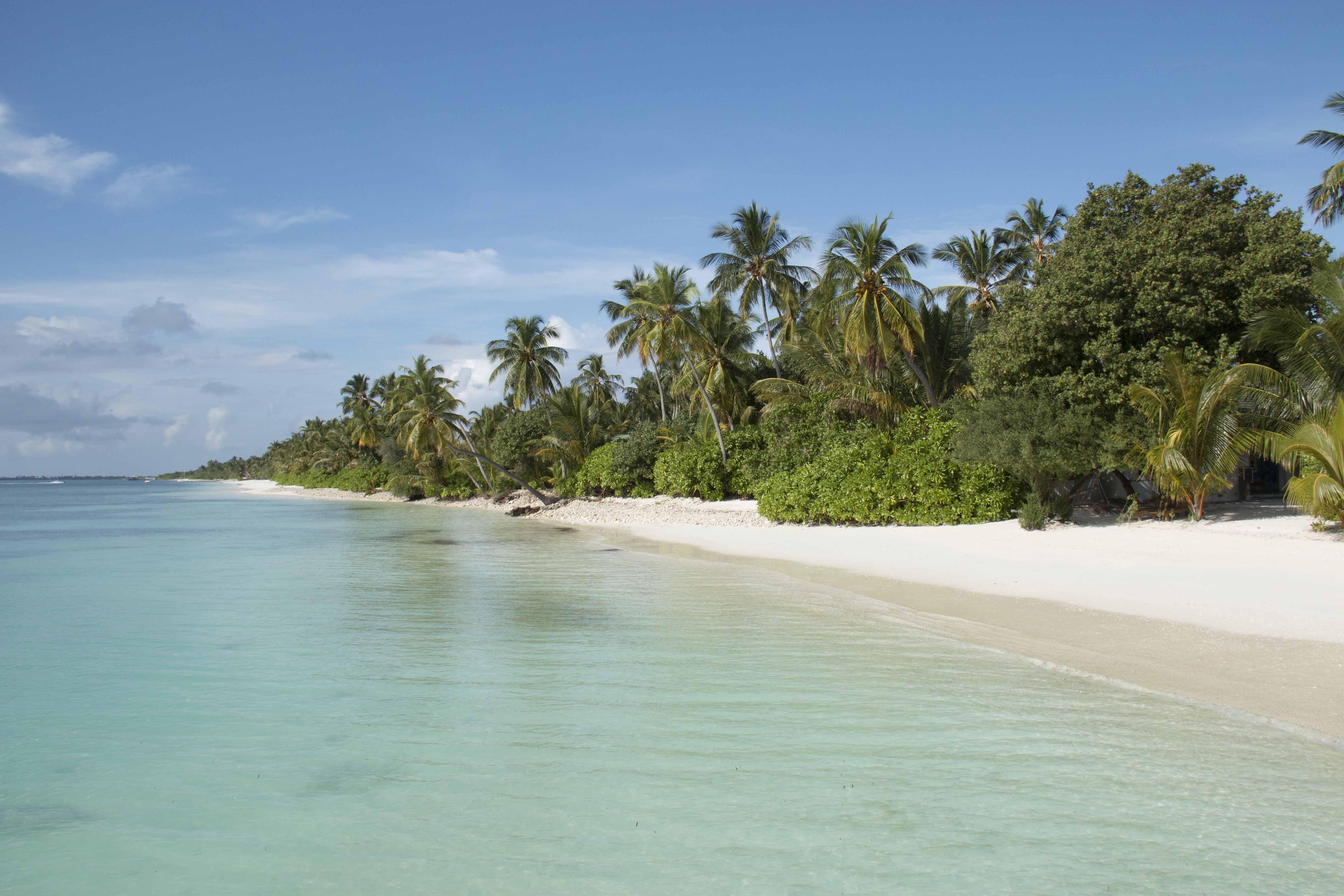 Maldives Resort Canareef Resort Maldives Family Resorts